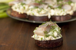 Herring fillet on toasted rye bread Stock Photos