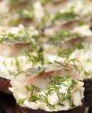 Herring fillet on toasted rye bread Stock Photography