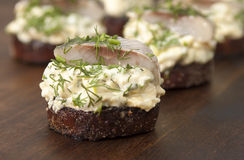 Herring fillet on toasted rye bread Royalty Free Stock Photos
