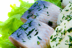 Herring fillets Royalty Free Stock Photos