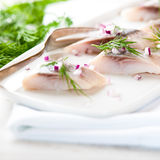 Herring fillets with dill and onion on a plate Stock Photo