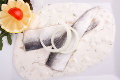 Herring fillets in dill sauce Stock Images