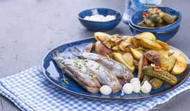Herring fillets on a plate, baked in the oven potatoes and pickled cucumbers and onions. Delicious traditional food of Holland. Dutch delicacy on a blue plate stock image