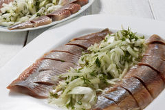 Herring fillets on a plate. With onions in oil. Selective focus Royalty Free Stock Image