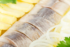 Herring fish fillets with potato and onion. Portion of herring fish fillets with potato and onion Stock Photos