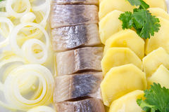Herring fish fillets with potato and onion. Portion of herring fish fillets with potato and onion background Royalty Free Stock Photos