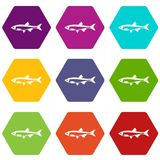 Herring fish icon set color hexahedron Royalty Free Stock Photos