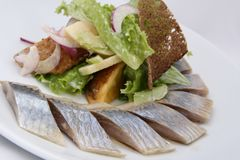 Herring fish with potatoes slices, greens, red onion and rye bread stock photo