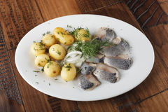 Herring fish with young potato. On white plate. wooden background Royalty Free Stock Image