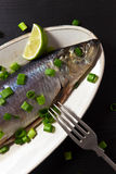 Herring with green onion Stock Images