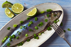 Herring with green onion Royalty Free Stock Photography