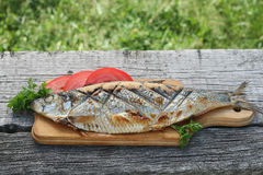 Herring, grilled, sliced tomato and parsley on a cutting Boards Royalty Free Stock Photo