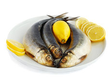 Herring with lemon Royalty Free Stock Images