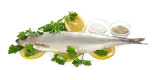 Herring on lemon slices, salt of spice and parsley Stock Image