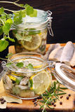 Herring marinated in oil with lemon and herbs Royalty Free Stock Images