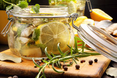 Herring marinated in oil with lemon and herbs Royalty Free Stock Image