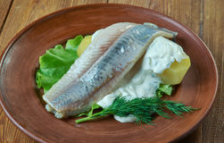 Herring with mustard potato salad. Herring with dill and Scandinavian mustard potato salad Stock Images