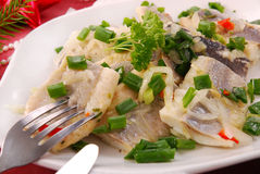Herring in oils with chive and onion for christmas. Herring in oils with chives and onion for christmas eve stock images