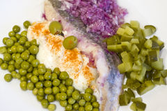 Herring in oils with vegetables Royalty Free Stock Images