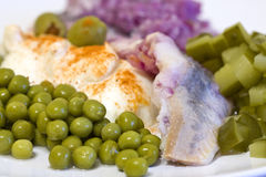 Herring in oils with vegetables Stock Photography