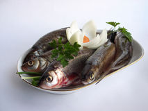 Herring On A Plate Stock Photography