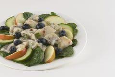 Herring, onion, blueberry, salad Royalty Free Stock Photos