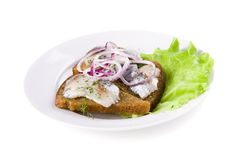 Herring and onion on bread Royalty Free Stock Image