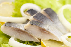 Herring with onion and greens. Herring with onion close-up shot Stock Image