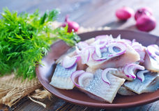 Herring Royalty Free Stock Photos