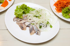 Herring with onion on white plate Royalty Free Stock Photography