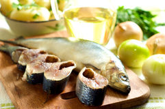 Herring and Onions Stock Images