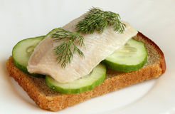 Herring on a piece of rye bread Royalty Free Stock Photos
