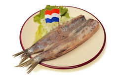 Herring on plate Royalty Free Stock Photography