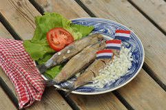 Herring Plate Stock Photography