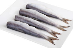 Herring on a plate Stock Photo