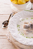 Herring with potato and cream. A tasty herring with potato and cream Royalty Free Stock Photos