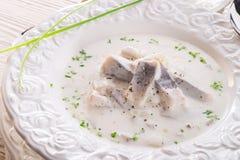 Herring with potato and cream. A fresh herring with potato and cream Royalty Free Stock Images