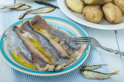 Herring and potato. Marinated herring and potato with olive oil Stock Photo