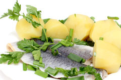Herring and potatoes on plate Stock Images
