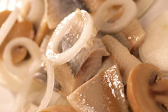 Herring rolls Stock Photography
