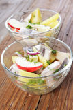 Herring salad Royalty Free Stock Images