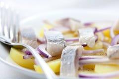 Herring Salad Royalty Free Stock Photo