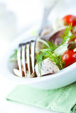 Herring Salad Stock Images