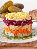Herring salad Royalty Free Stock Photo
