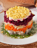 Herring salad Royalty Free Stock Photos