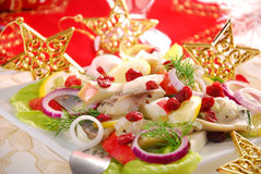 Herring salad with apple and cranberry Royalty Free Stock Image