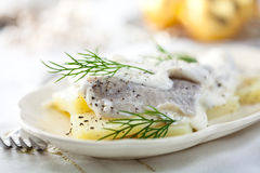 Herring salad for Christmas. Herring with cream sauce for Christmas Royalty Free Stock Images