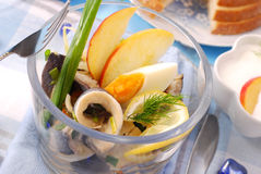 Herring salad in glass bowl Royalty Free Stock Photography