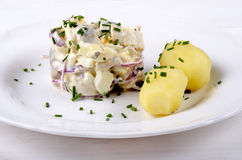 Herring salad with jacket potatoes. Herring salad with lilac onion and jacket potatoes Royalty Free Stock Photography