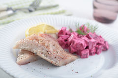 Herring with salad Royalty Free Stock Photos